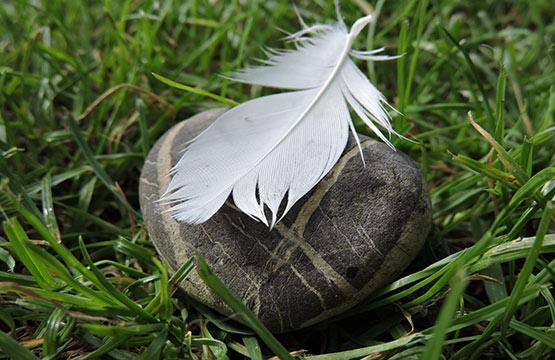 Feder und Stein Liegeempfinden