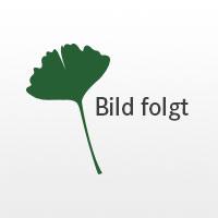 """Einzelbett und Doppelbett """"Pino 01"""""""